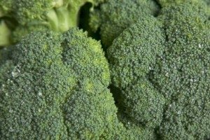 Compound in Broccoli may help treat breast cancer