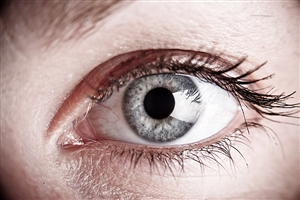 Steroids may help diabetics overcome eye disease, clinical testing reveals