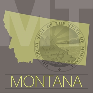 STD rates on the rise in Montana