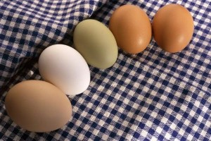 Eggs may not be as bad for the heart as previously thought