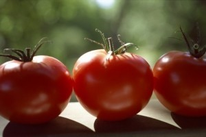Selenium offers little support against prostate cancer